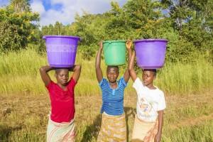 Kasungu, Malawi - March 28, 2015: Three woman carrying buckets on their heads walking by the road near Kasungu in Malawi.